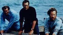 Lo squalo, 1975