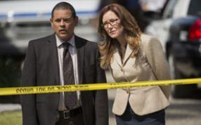MAJOR CRIMES IV