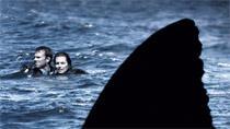 Open Water, 2003